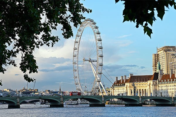 London Eye By River Thames With Leaves
