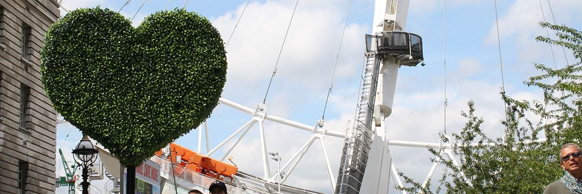 London Eye with heart shaped bush in front